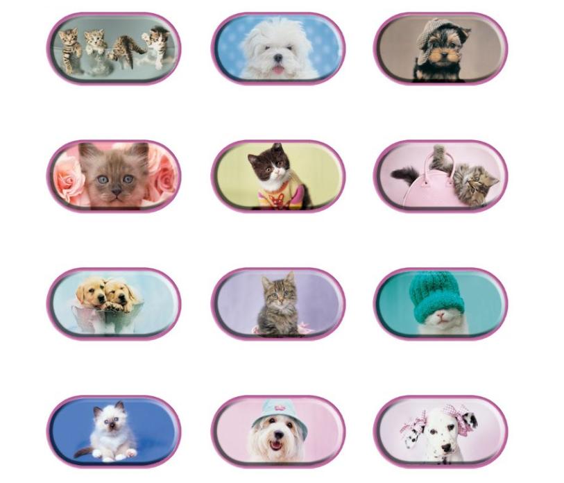 pouzdro ozdobné se zrcátkem na čočky - kočky a psi